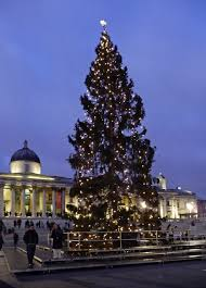 Christmas Tree, Trafalgar Square, London... © Christine Matthews ...