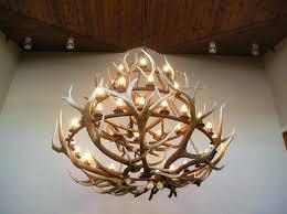 how to make deer horn chandelier mule deer antler chandelier making deer antler chandelier regarding awesome