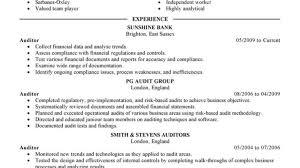 Sample Resume Bank Internal Auditor Bank Internal Auditor Resume