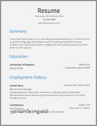 30 Inspirational Exchange Server Resume Examples Jonahfeingold Com