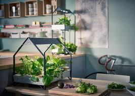 Hydroponic Kitchen Garden Best Vertical Hydroponic Gardening Systems Youtube Indoor Garden