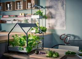2 of 17 ikea introduce a hydroponic indoor gardening kit