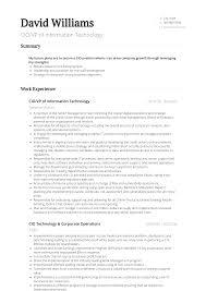 Cio Resume Samples Templates Visualcv