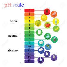 Alkaline Ph Chart Ph Scale Diagram With Corresponding Acidic Or Alkaline Values