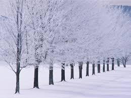 winter backgrounds for desktop tumblr. Exellent Desktop Intended Winter Backgrounds For Desktop Tumblr E