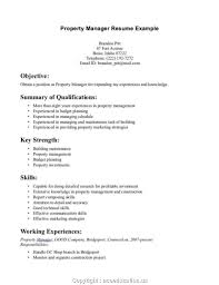Objective For Resume Marketing Propertyer Resume Objective Executive Examples Segmen
