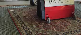 dusting an oriental rug with a rug badger