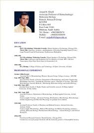 American Resume Format Resume Format Usa Best Resume And Cv American