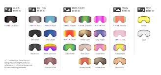 Giro Axis And Ella Goggles With Vivid Lens Gear Guide