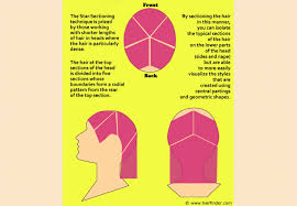 star sectioning and how to use this