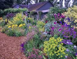Small Picture Perennial Flower Garden Design Plans decorating clear