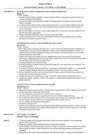Download Innovation Marketing Manager Resume Sample as Image file