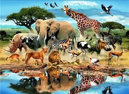 3d animal wallpaper desktop. Fine Animal PC Laptop 3D Animals Wallpapers Wall To 3d Animal Wallpaper Desktop D
