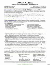 Project Manager Resume Summary Examples Valuable Agile Project Manager Resume Examples Technical Project 22