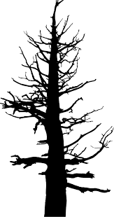 All silhouette design tree heart dead clipart black bare clip white vector stock images shutterstock free 88 942 illustration graphic format download file roots commercial halloween branches. Halloween Large Dead Tree Icons Png Free Png And Icons Downloads