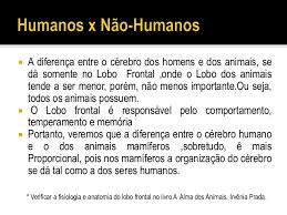 Resultado de imagem para IMAGENS DA DIFERENÇA DO CORPO HUMANO E DOS ANIMAIS CRIADOS