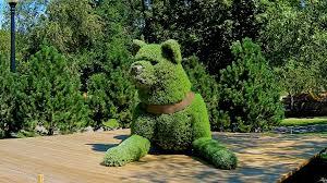 Sculpture végétal  - Page 2 Images?q=tbn:ANd9GcR_uMzqH-_VzQi5m876D1ubbmDUYzvNUsJPPnlRc_D6a0q6RvIM