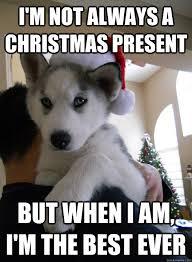 most interesting husky Christmas present memes | quickmeme via Relatably.com