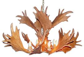 fallow deer antler chandelier light extra large no shades