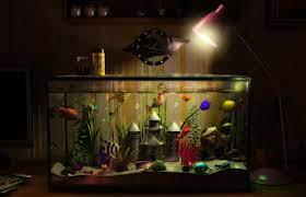 3d aquarium Desktop wallpapers 1440x900