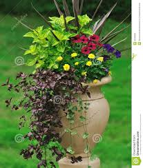 Vegetable Container Gardening With Everyday Objects  Tasteful Container Garden Plans