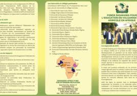 Brochure In French French Travel Brochure Best And Professional