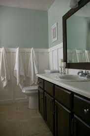 15 Great Bathroom Painting Ideas For Your Home  Home Design LoverGreat Bathroom Colors