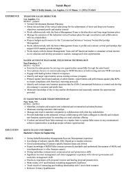 It Pre Salessume Sample Manager Doc Canada Telecom Sales Resume