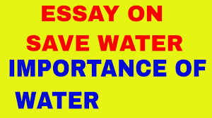 essay on save water  essay on save water