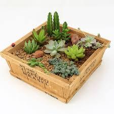 ZAKKA Wood Retro do old Square Flower Pots, meaty plant, woody, floral organ