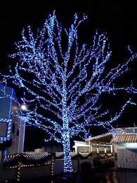 christmas lighting ideas outdoor. best of outdoor tree lighting ideas and christmas lights decorations decorating