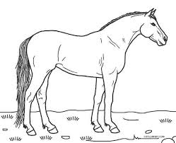 There are 5120 color horse print for sale on etsy, and they cost $14.59 on. Coloring Pages Horses Collection Whitesbelfast