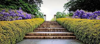 brooklyn botanic garden announces ceo transition