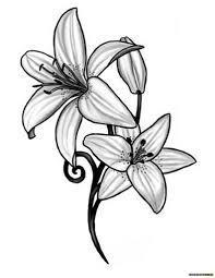 эскизы тату лилия клуб татуировки фото тату значения эскизы