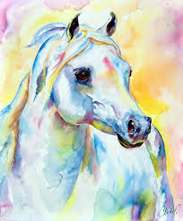 arabian painting white horse portrait by christy freeman