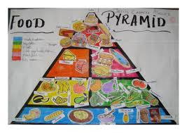 Food Pyramid Project 3rd Level Food Pyramid Project