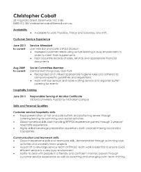 Sample Blank Resume Blank Resume Forms Top Rated Forms Of Resumes