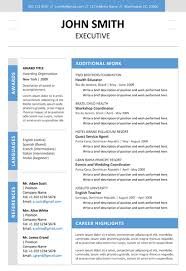 Executive Resume Template Cover Letter Portfolio