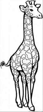 Giraffe Pattern Projects To Try Pinterest
