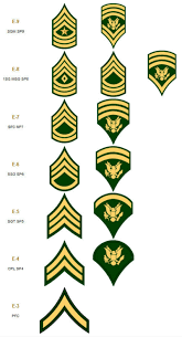 Army Nco Ranks Chart What Was The Purpose Of The Higher Specialist Ranks