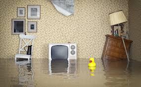 Wasserschaden Wer Muss Wann Zahlen Vermieterportal