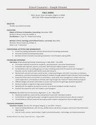 Resume Templates School Counselor Resume Objective Objective Of