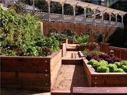 Small Picture Raised Bed Garden Designs Garden Design Ideas