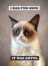 grumpy cat i had a birthday once. Brilliant Cat Throughout Grumpy Cat I Had A Birthday Once T