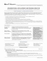 New Best Sales Resume Resume Design