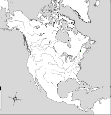 outline map of north america physical with blank outline physical on printable map of the united states and estern canada