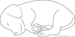 Small Picture Small Dog Sleeping Coloring Page Free Dog Coloring Pages
