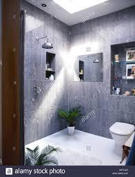 Moderne Grau Gefliesten Badezimmer Mit Offener Dusche Nische