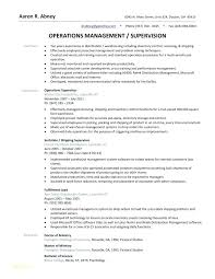 Google Resume Templates Free Extraordinary Warehouse Resume Template Free Or Manager Examples For Google Docs