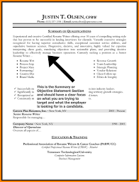 resume with profile statement 7 resume profile statement example happy tots